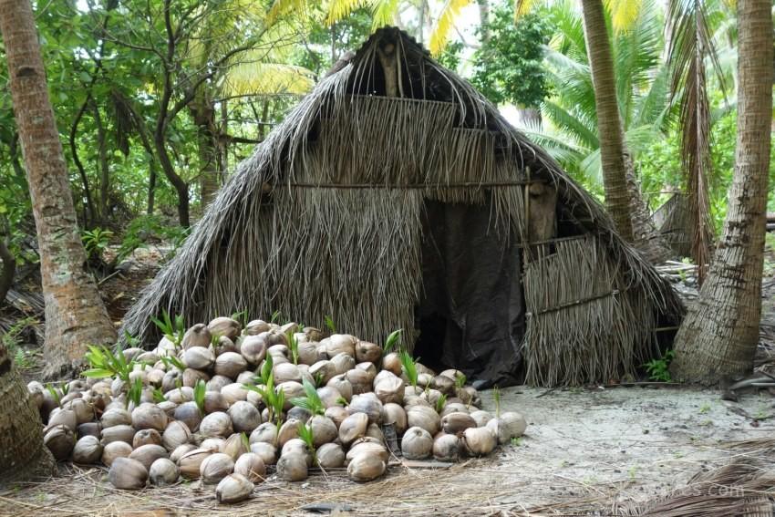 Nuhuta island lodging